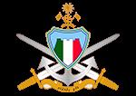 Maldives National Defence Force