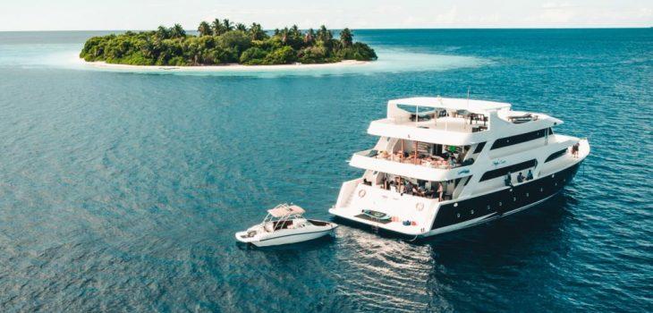 Handy cruise shipdiary.com