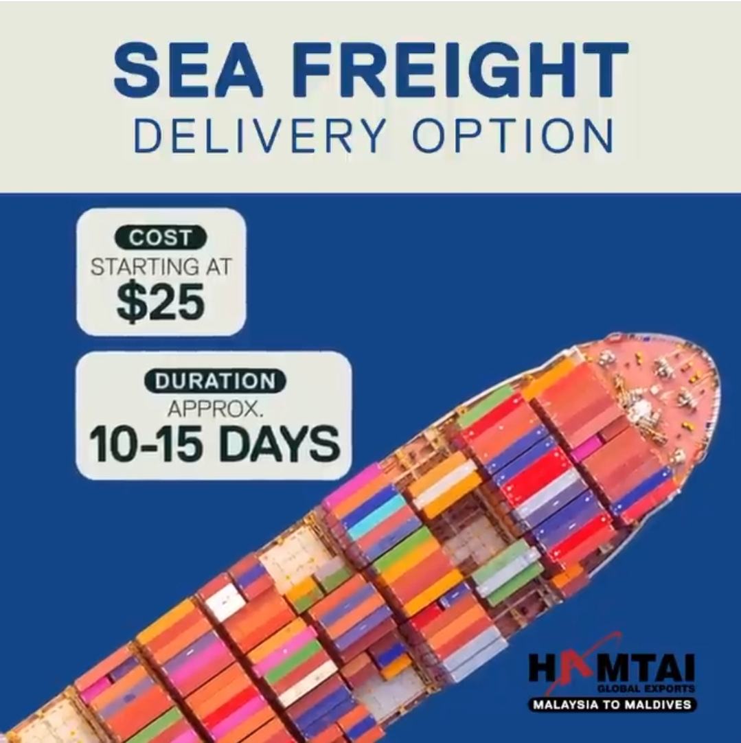 Seafreight by HamtaiGlobal shipdiary.com
