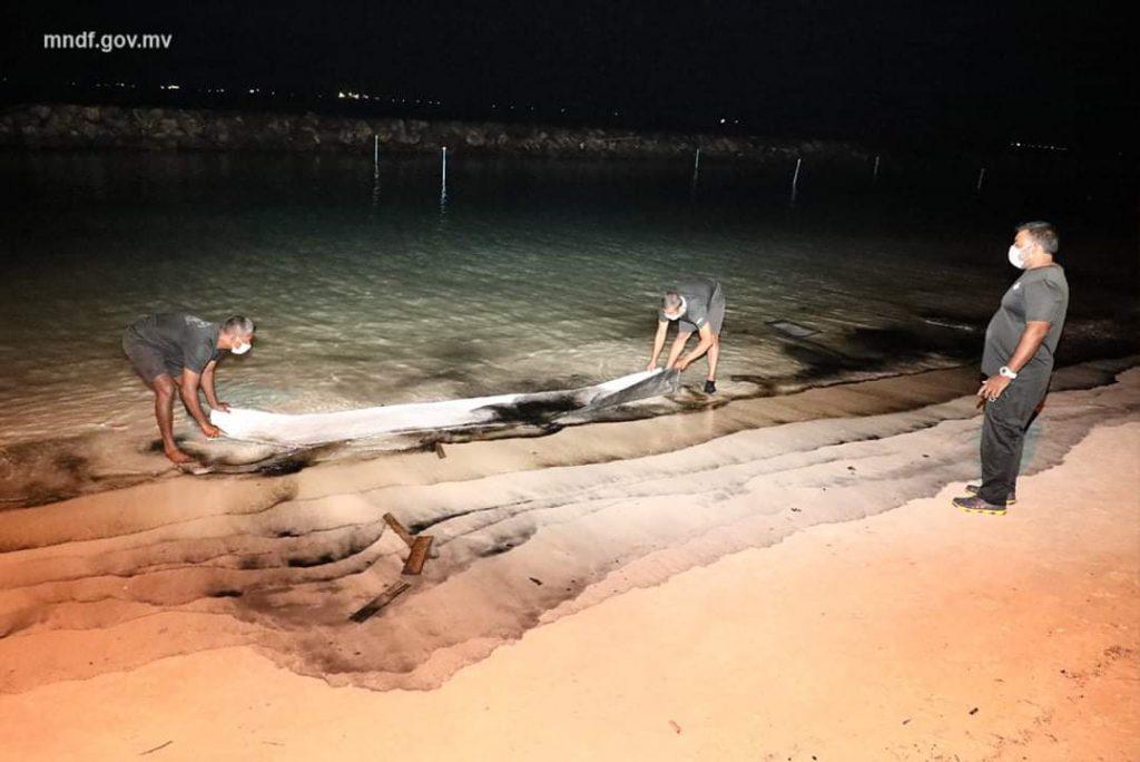 Rasfannu beach spill response in progress by MNDF
